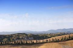 20160704_crete_senesi_siena_tuscany_66g67 (isogood) Tags: italy landscapes horizon country scenic tuscany crete siena cretesenesi asciano senesi