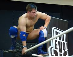 Pro Evolution Wrestling, Dan Splash (jacquemart) Tags: beefcake proevolutionwrestlingdansplash