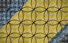 The Library of Birmingham (DaveKav) Tags: flower yellow birmingham circles library stripe olympus mathematics midlands overlap e510 libraryofbirmingham