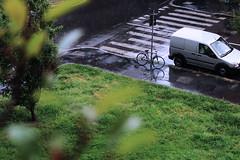 Bycicle (Sesto San Giovanni) (Mste14) Tags: verde green wet san pioggia prato giovanni bycicle bicicletta sesto