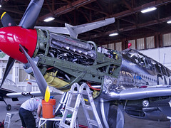 Working on the P-51 Betty Jane (Argon's Art) Tags: historic sonomacounty dday vintageaircraft collingsfoundation historicaircraft sonomajetcenter p51cbettyjane