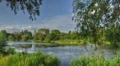 The Lake (Keo6) Tags: park summer lake town runcorn blinkagain