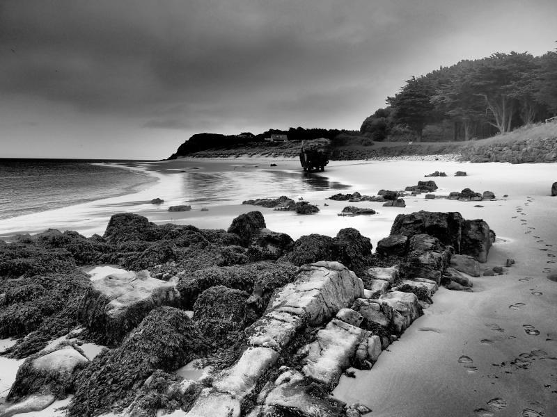 Caldey Island 26th June 2013 (4)