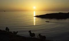 Kvalen2_sunset (knutwidar) Tags: sunset solnedgang kvalsvik kvalen