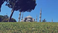 Istanbul randoms