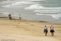 af0803_0326 (Adriana Füchter ... thank you for 4 Million Views) Tags: santa horse praia beach brasil canon mar gente south ação santacatarina catarina cavalo sul pescador