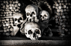 Skull (AchillesSHAN) Tags: trip travel church europe republic czech hora bone kutna