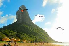 Fragata (Rodrigo Valença) Tags: summer brazil praia beach brasil island paradise ile playa atlantic verano tropical verão plage isla paraiso ilha brasile nordeste atlantico esmeralda noronha