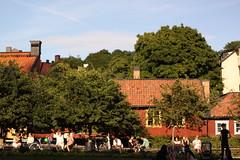 SoFo (waitingforwinter) Tags: park travel trees summer sunlight nature sunshine canon eos 50mm sweden stockholm f14 14 journey dslr 500d