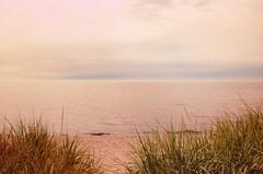 Polsk dimma (Polish fog) (Marie Granelli) Tags: ocean summer sky beach skåne sweden explore söderslätt