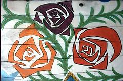 san francisco - graffiti - flores (pineider) Tags: usa graffiti nikon san francisco viso d800