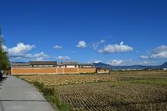 "Xizhou, near Dali • <a style=""font-size:0.8em;"" href=""http://www.flickr.com/photos/98061816@N08/11213629473/"" target=""_blank"">View on Flickr</a>"