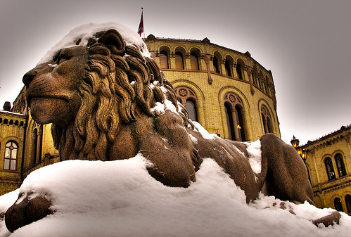 Snow covered lion