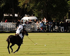 117th Hurlingham Club Open Championship, Argentina / 117 Abierto de Hurlingham YPF () Tags: vacation horse holiday latinamerica southamerica argentina argentine cheval nikon pony 70300mm polo rtw pferd vacanze tack hest roundtheworld paard sudamerica triplecrown  polopony amricadosul amricalatina globetrotter southernhemisphere zonasul amriquelatine polomatch  poloclub argentinien 16days  hurlingham equidae onhorseback amricadelsur sdamerika zonea hurlinghamclub worldtraveler  ariannin  repblicaargentina littleeurope laaguada  americadelsud chukkas argentinerepublic  argentinidad pologame poloteam ladolfina   d700 zonaa nikond700 chukkers abiertodehurlingham  triplecorona 117thhurlinghamopen hurlinghamopen capitaloftango  chukers tradiciondelpoloargentino