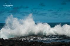 El Confital (David Azurmendi) Tags: ocean travel las sea costa david photography mar viajes bahia gran fotografia canaria palmas confital azurmendi