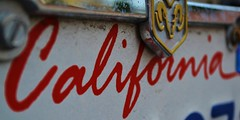 Cali 1 Edit (DanielAllen96) Tags: barcelona china california birthday christmas city family flowers blue autumn friends england blackandwhite bw food dog baby chicago canada black france flower color berlin green bird art fall film beach halloween church girl car fashion birds animals bike festival architecture clouds cat canon germany garden de geotagged fun graffiti hawaii dance football concert asia europe day florida band australia