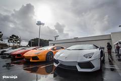 Lamborghini Newport Beach Supercar Saturday 3/1/2014 (carninja) Tags: california friends red orange cars rain fun saturday socal orangecounty lamborghini carshow exotics exoticcars lambo carlife carevent carninja aventador lamborghiniaventador lambopower lamborghininewportbeach