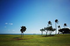 scenery of hawaii (mr_goindol) Tags: hawaii waikiki oahu maui