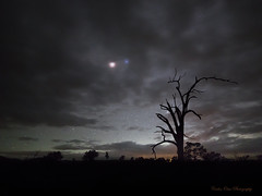Red Mars Blue Spica (ourkind) Tags: mars tree clouds canon stars photography nightscape australia nsw newsouthwales spica airglow