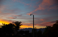Sunset (cfeliciano25) Tags: california sunset sky sun yellow palmtree
