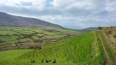 Farrannacarriga (christopher_brown) Tags: ireland landscape kerry ie irl dinglepeninsula countykerry ringofdingle