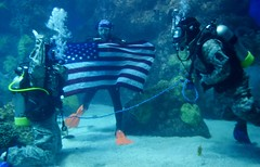 Undertwater Re-up (fortythirdsb) Tags: water carson soldier army evans colorado united under scuba diving denver online knowledge cpt ramos ssg active oath affirmation hedges reenlistment reup