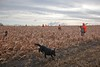 South Dakota Luxury Pheasant Lodge - Gettysburg 26