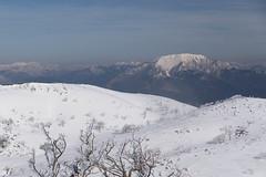 伊吹山がこんにちは (deep.deepblue) Tags: nikon 日本 山 冬 風景 d610 滋賀県 米原市