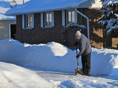 Go easy shovelling that snow in the cold, old man... (deanspic) Tags: cold mi risk medical medicine temperature subzero myocardialinfarction medicalmatters g1x