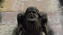 Sculpture Grotesque found at Landaff Cathedral (thompson_nigel57)