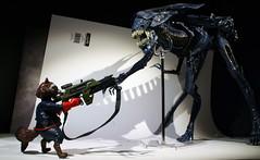 Queen Battle (Brundlefly85) Tags: comics actionfigure photo dc comic action lol alien aliens horror marvel figures neca amature 2015