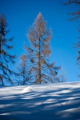 KrF_Sonnenberg_51 (dieeule.ch) Tags: winter schweiz switzerland luzern lucerne sonnenberg kriens