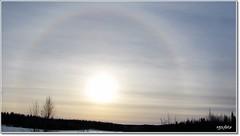 Sunshine in Bodträskfors (HJsfoto) Tags: winter sunshine landscape soe potofgold bodträskfors