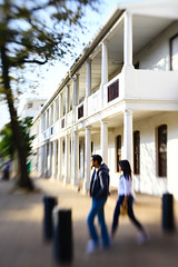 IMG_4871 (EGouws) Tags: autumn lensbaby canon 5d jpeg stellenbosch composer canon5dmkii