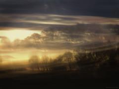 flow (birdcloud1) Tags: trees light sunset flow journey dreams impression icm intentionalcameramovement eveningtides canonsx60hs amandakeogh sx60hs amandakeoghphotography birdcloud1 landscapeimpression