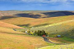 Heppner, Oregon (erwin.delfin_photography) Tags: green oregon landscapes hills vistas rollinghills heppner
