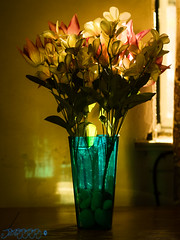 Natural Light and Artificial Flowers [Week 21, 2016] (Brian D' Rozario) Tags: flowers light sunset stilllife flower composition gold golden nikon warm artistic fake artificial vase 50mmf18d warming tabletop reflector d7k d7000 briandrozario brian19869