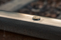 Coin on a chewing gum stuck to the railroad (St. Petersburg, Russia), 07-2012 (Vlad Meytin, vladsm.com) (Vlad Meytin | Instagram: vmwelt) Tags: pictures railroad summer hot stpetersburg photography coin russia tracks railway chewinggum 50 stpetersburgrussia artpictures  khimporiumco meytin vladmeytin vladsm vladsmcom 50