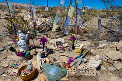 West Texas-Big Bend May 2016-143 (Rick Byrnes) Tags: cemetery terlingua westtexas gonzo bigbend terlinguacemetery oldterlingua