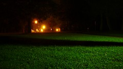 Night (Shakar Photography) Tags: nature night nacht natur scene gras 2011