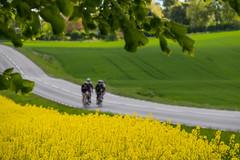 On the bike through the landscape (Infomastern) Tags: field bike landscape countryside cycle raps canola rapeseed landskap geolocation rapefield flt landsbygd cyklist geocity camera:make=canon exif:make=canon exif:focallength=135mm geocountry geostate exif:lens=efs18200mmf3556is exif:aperture=56 exif:isospeed=100 camera:model=canoneos760d exif:model=canoneos760d