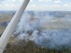 05062016 Incendios forestales en Petn 04 (Coordinadora Nacional para Reduccin de Desastres) Tags: guatemala fuego medioambiente incendios petn conred conap