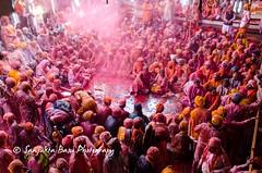 Barsana Nandgaon Lathmar Holi Low res (44 of 136) (Sanjukta Basu) Tags: holi festivalofcolour india lathmarholi barsana nandgaon radhakrishna colours