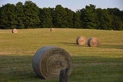 The First Cut (Linda Ramsey) Tags: field hay bales