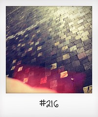 """#DailyPolaroid of 1-5-16 #216 • <a style=""""font-size:0.8em;"""" href=""""http://www.flickr.com/photos/47939785@N05/27554159950/"""" target=""""_blank"""">View on Flickr</a>"""