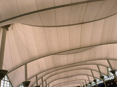 mother's day 2016 on galveston island,   on the way home, denver airport architecture 5-16 (nolehace) Tags: sanfrancisco plant galveston flower architecture island spring airport day denver mothers co bloom 2016 516 colordo nolehace fz35