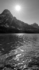 Lake of Little Suns (820-Photography by James Anderson) Tags: blackandwhite alberta banffnationalpark sunstar waterfowllake