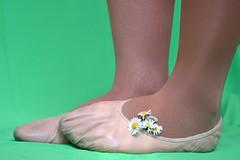 Sedmikrsky (055) (Merman cviky) Tags: ballet socks flat tights socken pantyhose slipper nylon slippers spandex lycra medias nylons balletslippers strumpfhose strumpfhosen ballerinas collant collants cviky ballettschuhe schlppchen ballettschuh ballettschlppchen elastan pikoty punoche