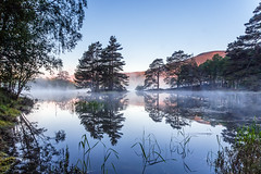Island in the Mist (Stoates-Findhorn) Tags: trees mist sunrise island dawn scotland gate unitedkingdom highland loch aviemore 2016 vaa
