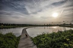 avondwandeling (Jan-Jacob Luijendijk) Tags: zuidpolder barendrecht toller zuidholland nederland rotterdam nikon 1635 d600